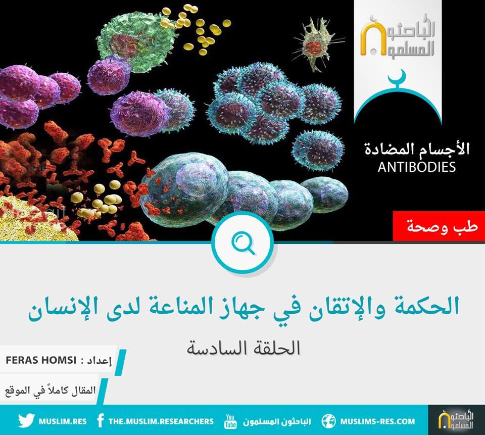 الحكمة والاتقان في جهاز المناعة لدى الأنسان (6) الأجسام المضادة
