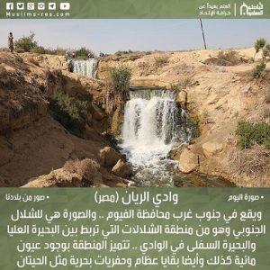 وادي الريان (مصر)