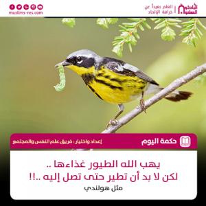 يهب الله الطيور غذاءها