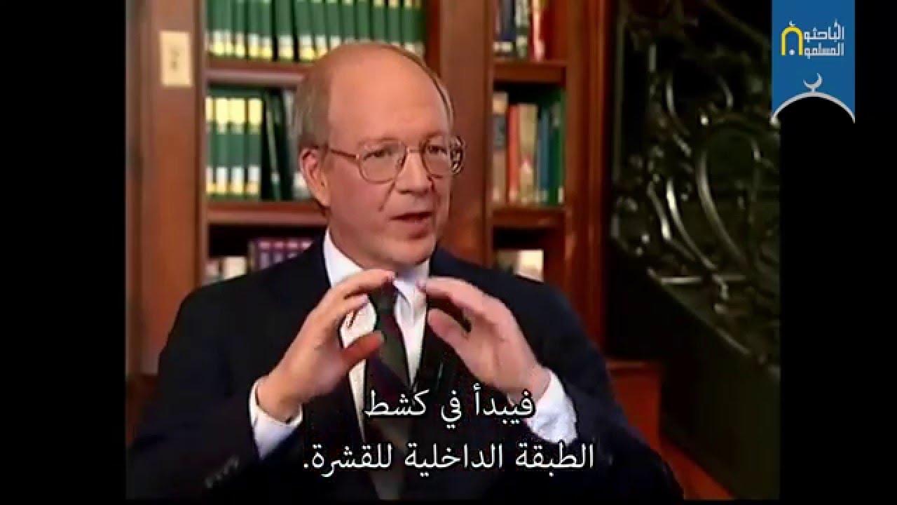 ديك الفرشاة الرومي يتحدى التطور – د. جوب مارتن Jobe Martin
