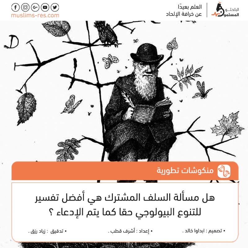شجرة-التطور-و-السلف-المشترك-المزعوم